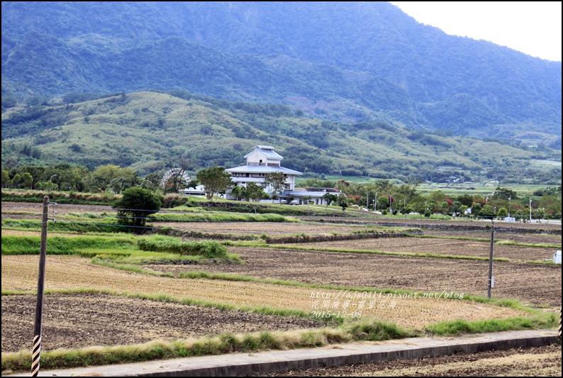 2015-12-富里花海8.jpg