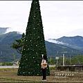 2015-12-富里花海14.jpg