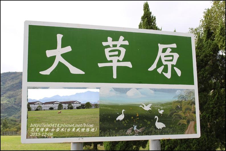 2015-12-台東武陵悠遊2.jpg