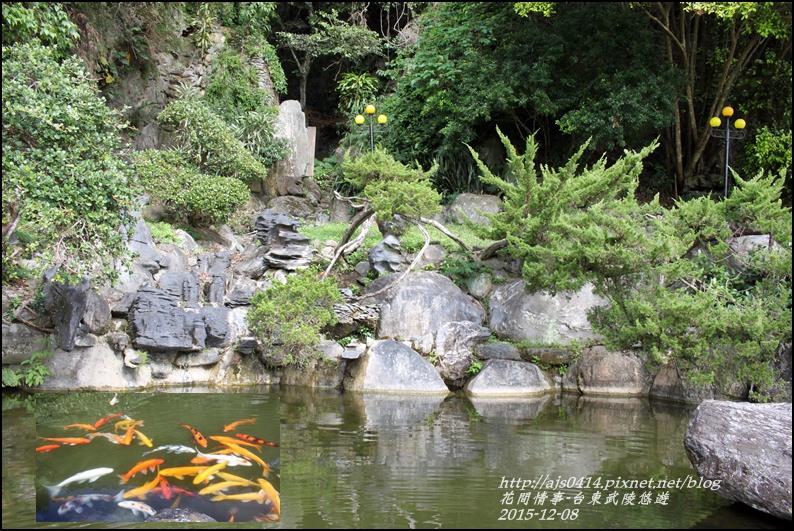 2015-12-台東武陵悠遊15.jpg