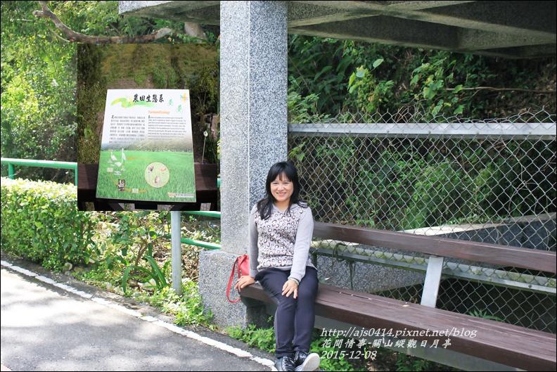 2015-12-關山縱觀日月亭16.jpg