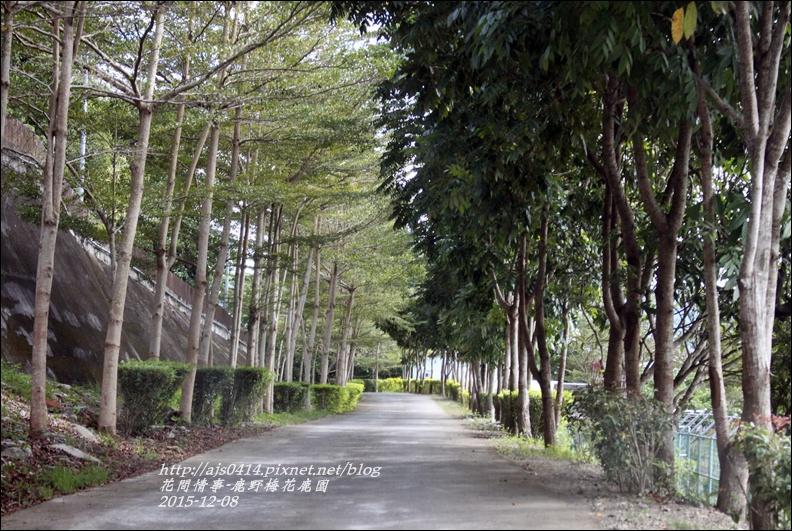 2015-12-鹿野梅花鹿園區9.jpg