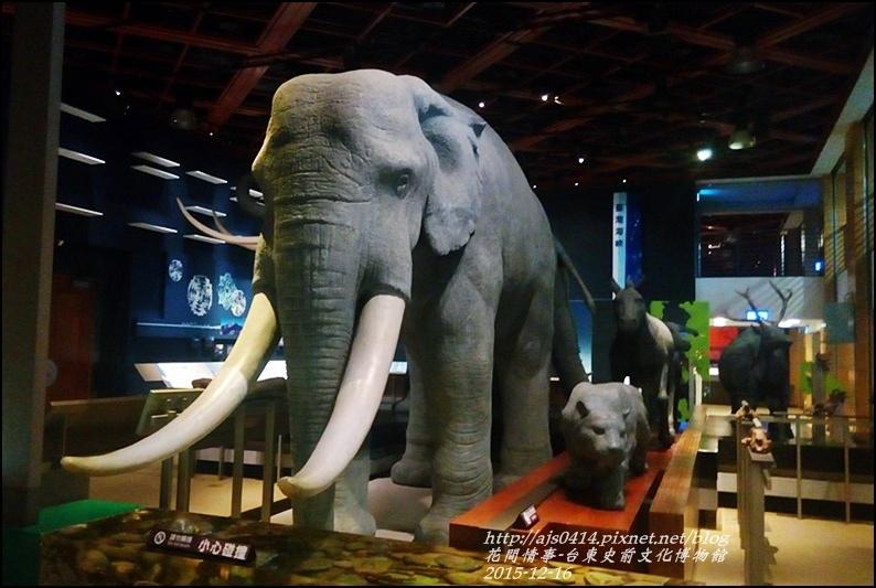 2015-12-台東史前文化館物館7.jpg
