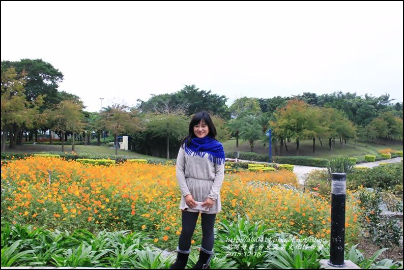 2015-12-台東史前文化館物館28.jpg