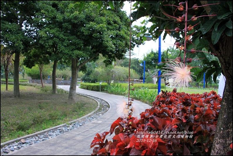 2015-12-台東史前文化館物館35.jpg