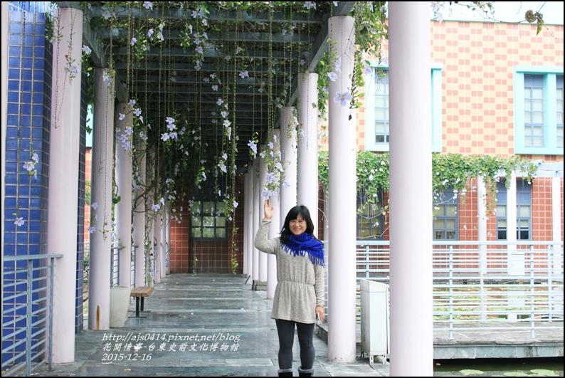 2015-12-台東史前文化館物館37.jpg