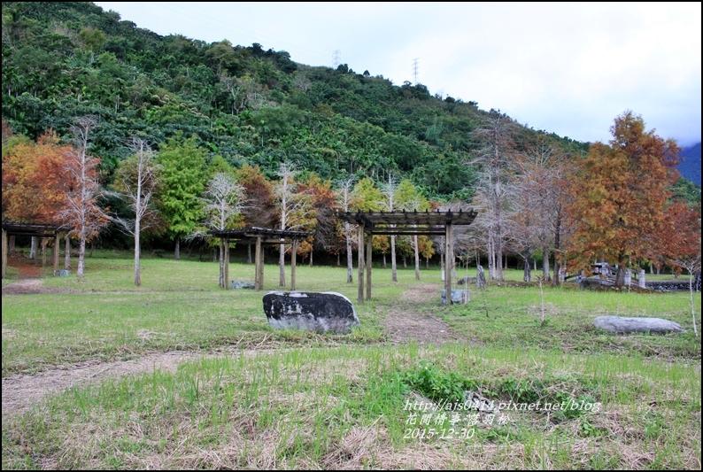 2015-12-落羽松之美2.jpg