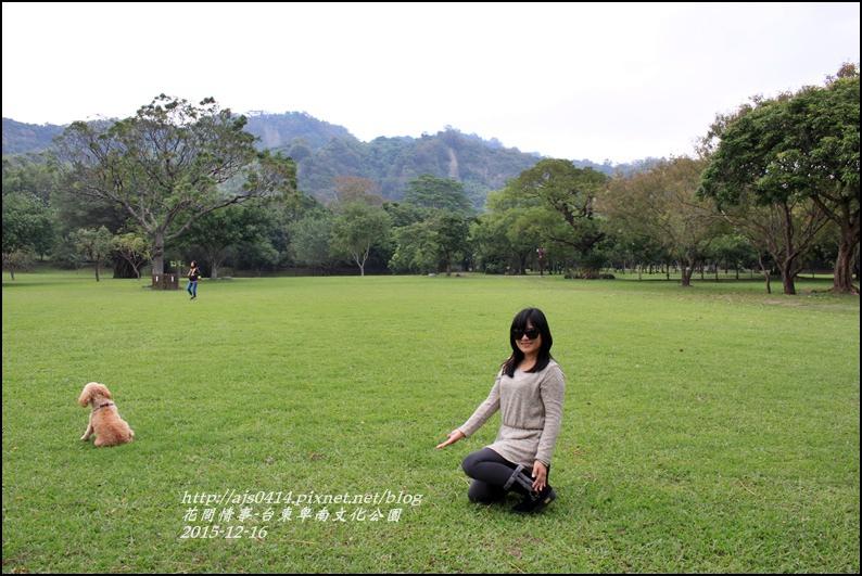2015-12-台東卑南文化公園13.jpg
