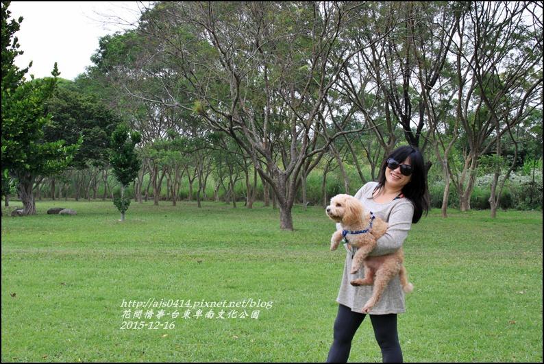 2015-12-台東卑南文化公園12.jpg