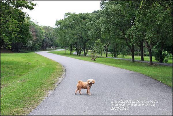 2015-12-台東卑南文化公園16.jpg