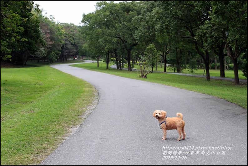 2015-12-台東卑南文化公園20.jpg