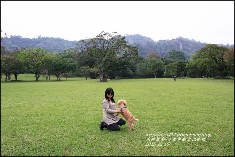 2015-12-台東卑南文化公園26.jpg