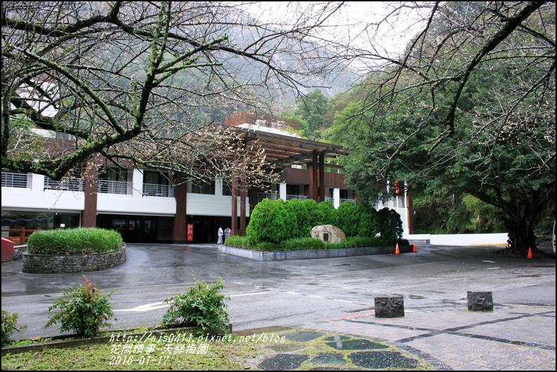 2016-01-天祥梅園25.jpg