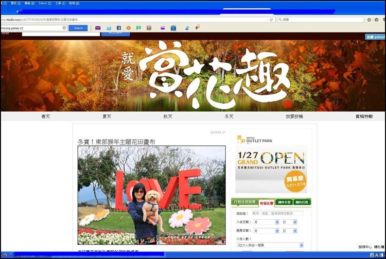 2015-01-26-最愛賞花趣1.jpg