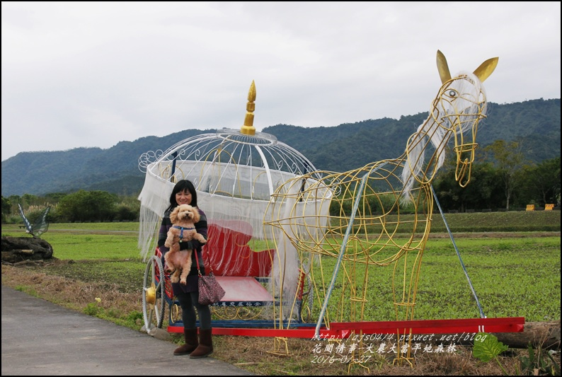 2016-01-大農大富平地森林19.jpg
