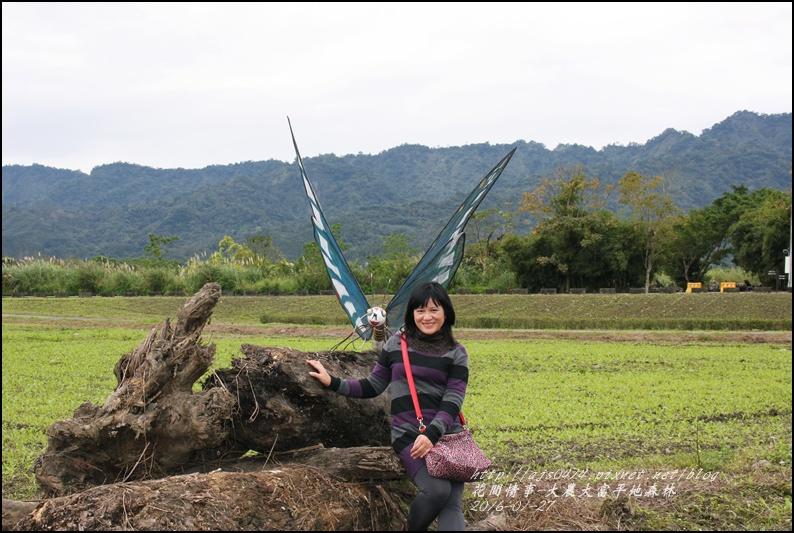 2016-01-大農大富平地森林22.jpg