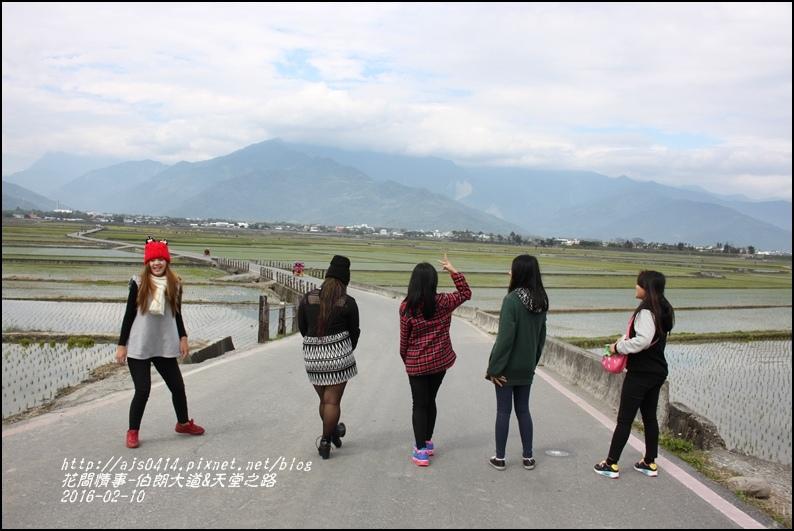 2016-02-伯朗大道&天堂之路27.jpg