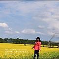 2016-02-大農大富平地森林油菜花田19.jpg