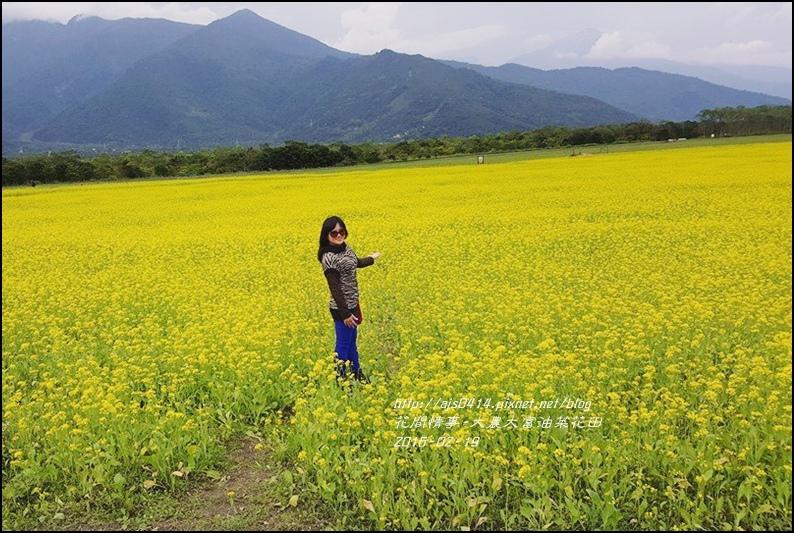 2016-02-大農大富平地森林油菜花田34.jpg