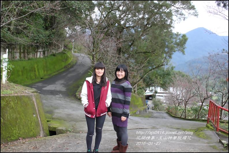 2016-01-玉山神學院櫻花18.jpg