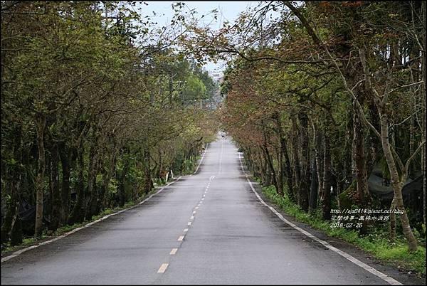 2016-02-鳳林水源路1.jpg