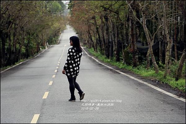 2016-02-鳳林水源路4.jpg