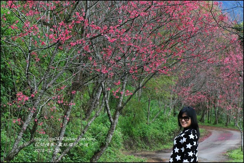 2016-02-鳳林櫻花步道5.jpg
