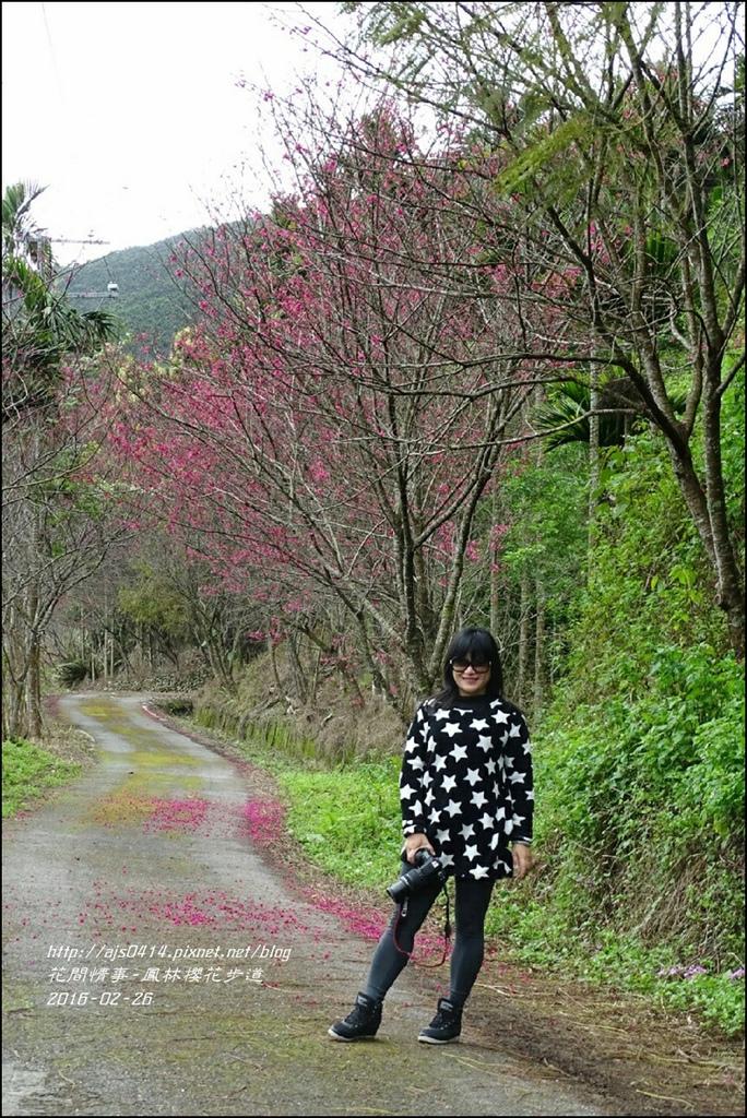 2016-02-鳳林櫻花步道16.jpg