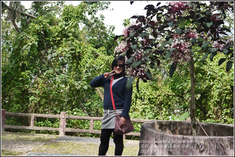 2016-03-美崙山森林公園4.jpg