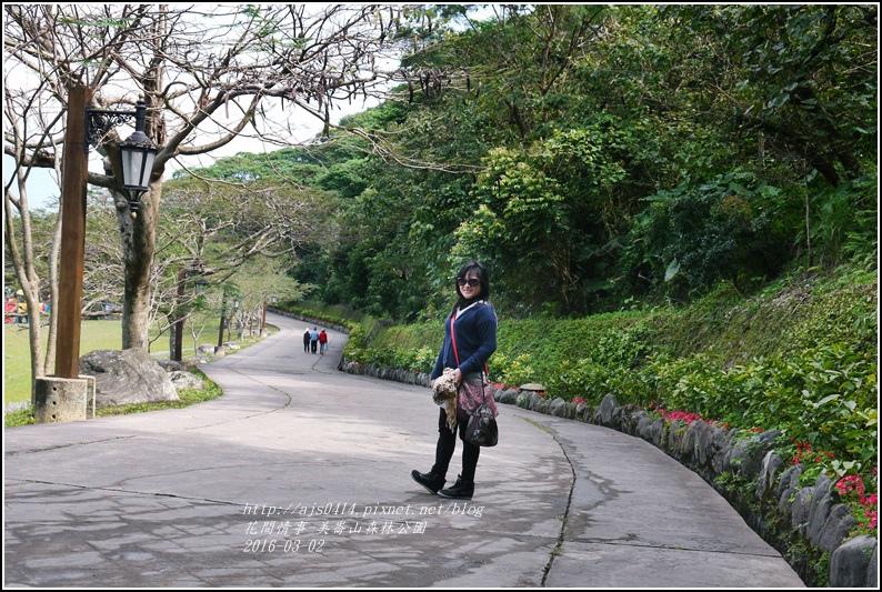 2016-03-美崙山森林公園8.jpg