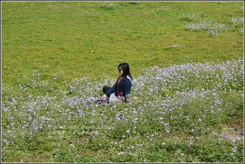 2016-03-美崙山森林公園9.jpg