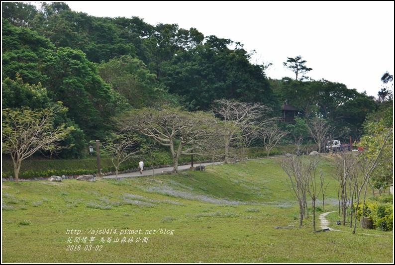 2016-03-美崙山森林公園14.jpg
