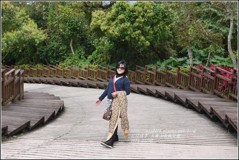 2016-03-美崙山森林公園16.jpg