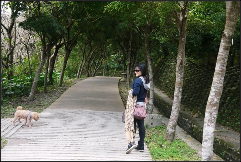 2016-03-美崙山森林公園17.jpg