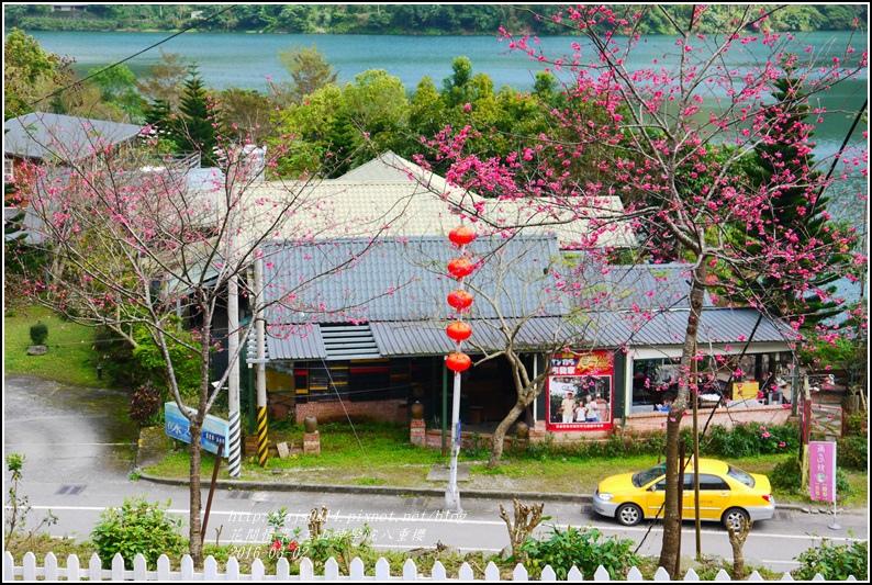 2016-03-玉山神學院八重櫻34.jpg