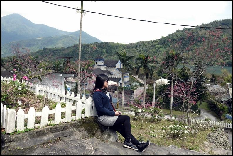 2016-03-玉山神學院八重櫻36.jpg