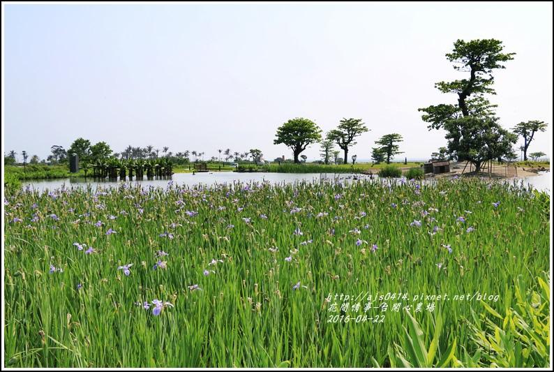 台開心農場09-2016-04.jpg