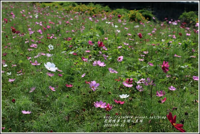 台開心農場15-2016-04.jpg