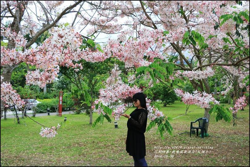 2016-05-鹿鳴溫泉洒店(花旗木)33.jpg
