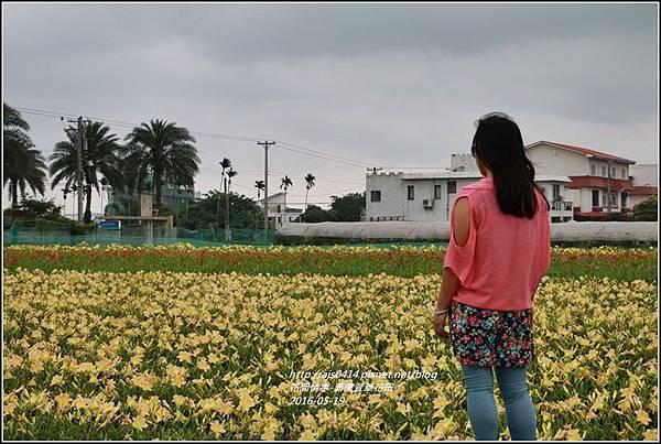 2016年嘉德萱草花田26.jpg