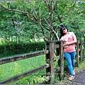 馬太鞍濕地-105-06-04.jpg