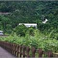 馬太鞍濕地-105-06-14.jpg