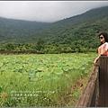 馬太鞍濕地-105-06-18.jpg