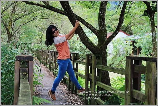馬太鞍濕地-105-06-25.jpg