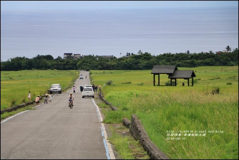金剛大道(長濱伯朗大道)2016-06-32.jpg