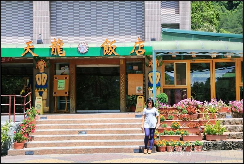 天龍吊橋-2016-05-09.jpg