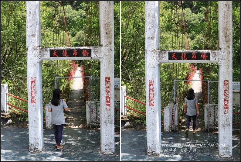 天龍吊橋-2016-05-11.jpg