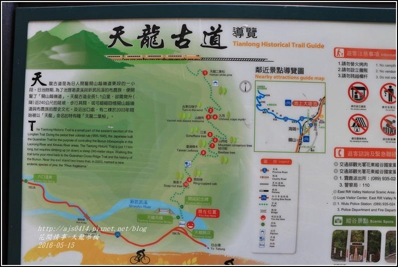 天龍吊橋-2016-05-21.jpg
