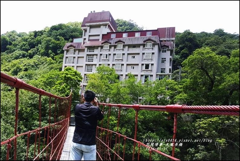 天龍吊橋-2016-05-31.jpg