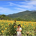 北迴歸線向日葵花海-2016-06-13.jpg
